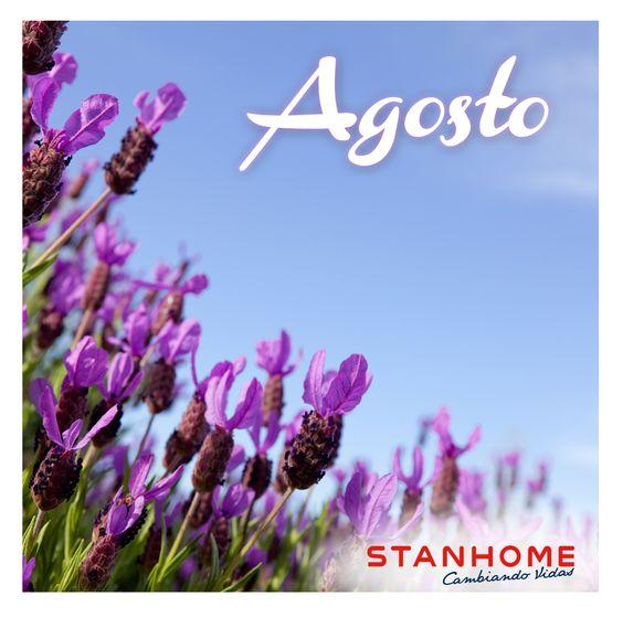 agos 46