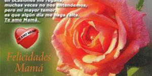 Hermosas palabras y mensajes para dedicarle a Mamá