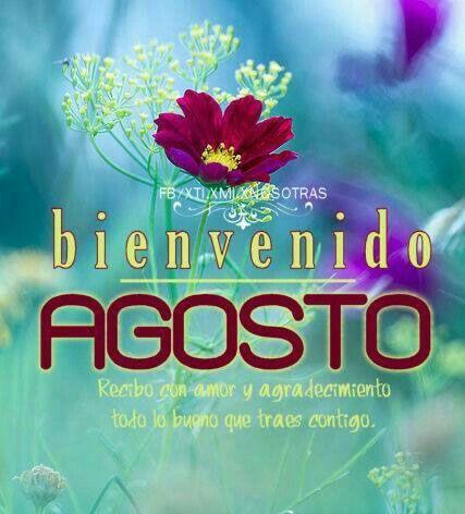 agos 23