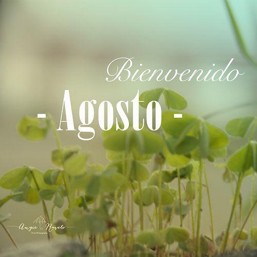 agos 40