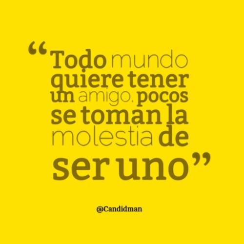 amor 8