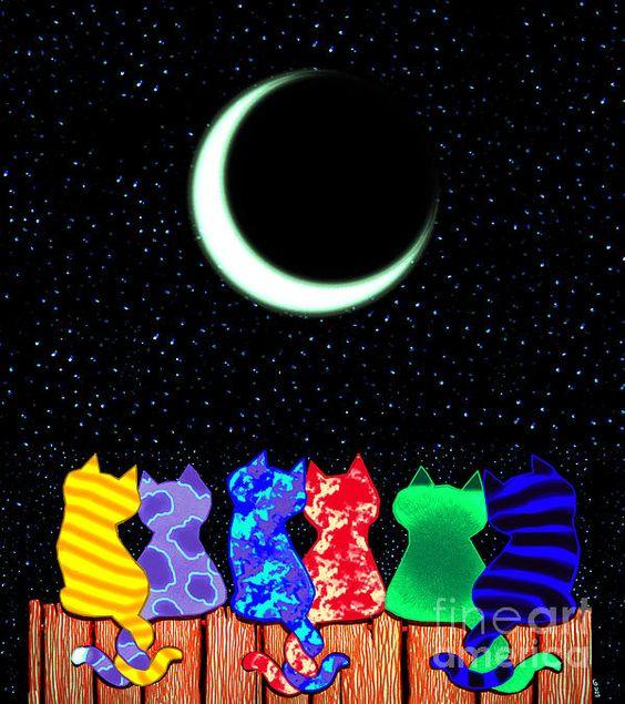 noche-19