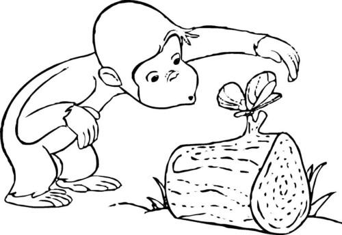 Imágenes DIVERTIDAS Y GRACIOSAS para Niños y Niñas