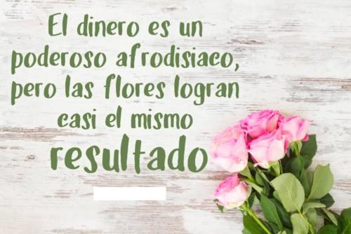 Imagenes De Flores Naturales Flores Con Frases Flores De Papel