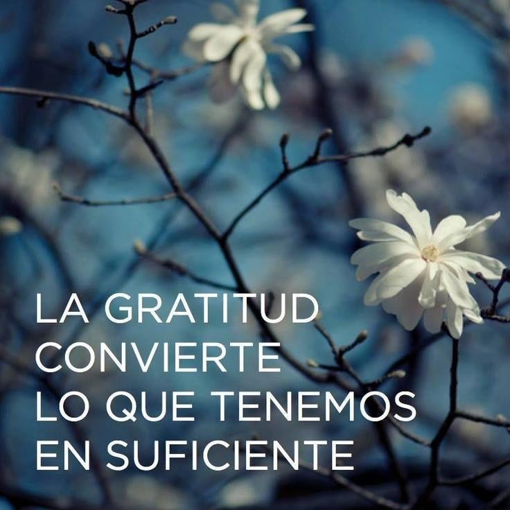 Imágenes De Agradecimiento Con Frases Palabras Y Mensajes