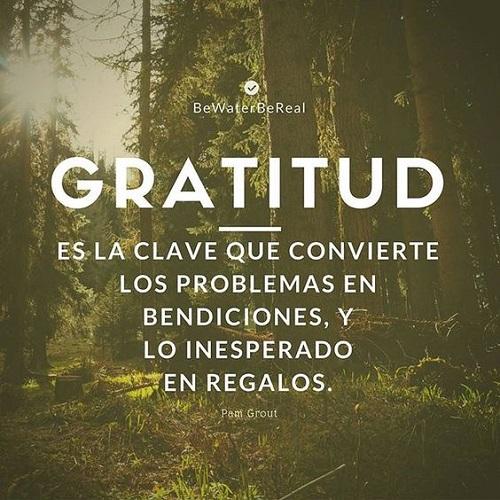 Frases De Agradecimiento Para Dar Las Gracias Y Reflexionar